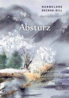 Absturz (ebook)