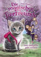 Die magischen Tierfreunde 4 - Susi Samtpfote geht verloren (ebook)