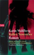 Kalter November (ebook)