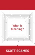 What Is Meaning? (ebook)