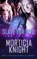 Slave For Two (ebook)