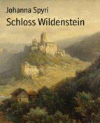 Schloss Wildenstein (ebook)