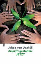 Zukunft gestalten: JETZT (ebook)