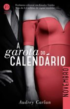 A garota do calendário: Novembro (ebook)