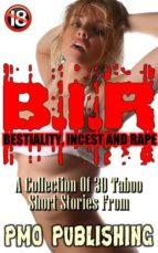 B.I.R (ebook)
