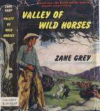 Valley of Wild Horses (ebook)