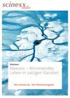 Meereis (ebook)