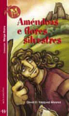 Améndoas e flores silvestres (ebook)