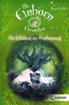 Die Einhorchroniken 4 - Die Erfüllung der Prophezeiung (ebook)