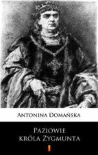 Paziowie króla Zygmunta (ebook)