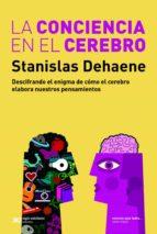 La conciencia en el cerebro: Descifrando el enigma de cómo el cerebro elabora nuestros pensamientos (ebook)