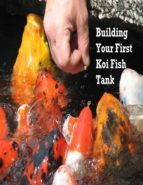 Building Your First Koi Fish Tank (ebook)