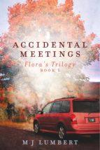 Accidental Meetings (ebook)