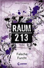 Raum 213 - Falsche Furcht (ebook)