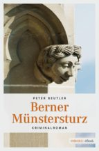 Berner Münstersturz (ebook)