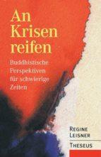 An Krisen reifen (ebook)