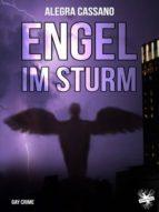 Engel im Sturm (ebook)