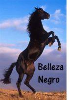 Belleza Negro (ebook)