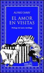 El amor en visitas (ebook)
