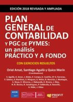 Plan General de Contabilidad y PGC de Pymes (ebook)