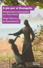 A pie por el Evangelio (eBook)
