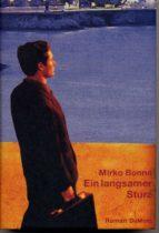 Ein langsamer Sturz (ebook)