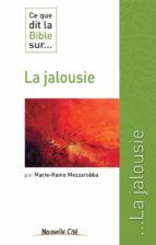 Ce que dit la Bible sur la jalousie (ebook)