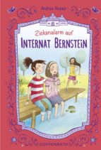 Internat Bernstein - Band 3 (ebook)