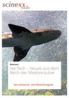 Hai-Tech (ebook)