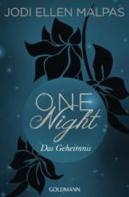 One Night - Das Geheimnis (ebook)