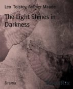 The Light Shines in Darkness (ebook)