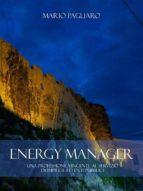 Energy manager: Una professione vincente al servizio di imprese ed enti pubblici (ebook)