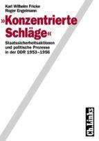 Konzentrierte Schläge (ebook)
