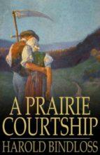 A Prairie Courtship (ebook)