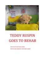 TEDDY RUSPIN GOES TO REHAB