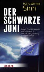 Der Schwarze Juni (ebook)