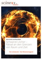 Schwarze Löcher (ebook)