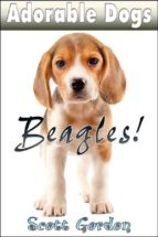 Adorable Dogs: Beagles