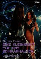 EINE KLEINIGKEIT FÜR UNS REINKARNAUTEN (ebook)