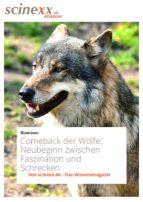 Comeback der Wölfe (ebook)