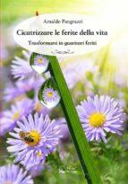 Cicatrizzare le ferite della vita (ebook)