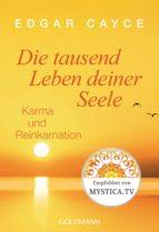 Die tausend Leben deiner Seele (ebook)