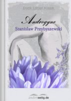 Androgyne (ebook)
