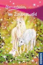 Sternenfohlen, 13, Im Zauberwald (ebook)