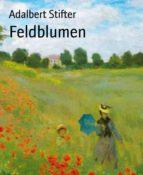 Feldblumen (ebook)