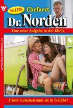 Chefarzt Dr. Norden 1125 – Arztroman (ebook)