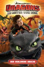 Dragons - Die Reiter von Berk 1: Der verlorene Drache (ebook)