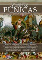 Breve historia de las Guerras Púnicas (ebook)