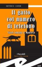 Il gatto col numero di telefono. Vitali indaga a Mantova (ebook)