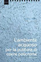L'ambiente acquoso per il trattamento di opere policrome (ebook)